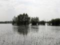 Panorama - Powódź 2010 [01]